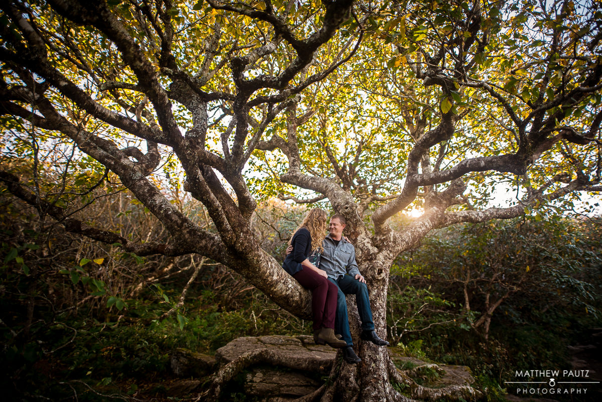 Couple hugging in giant tree in Fall