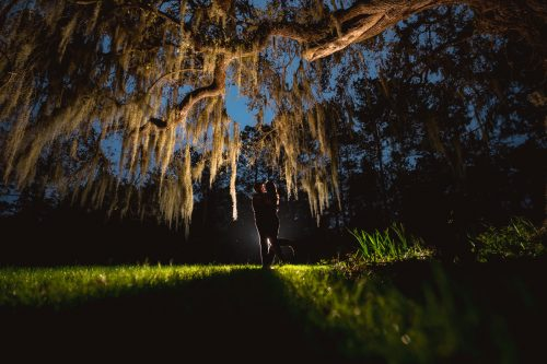 magnolia plantation engagement photos