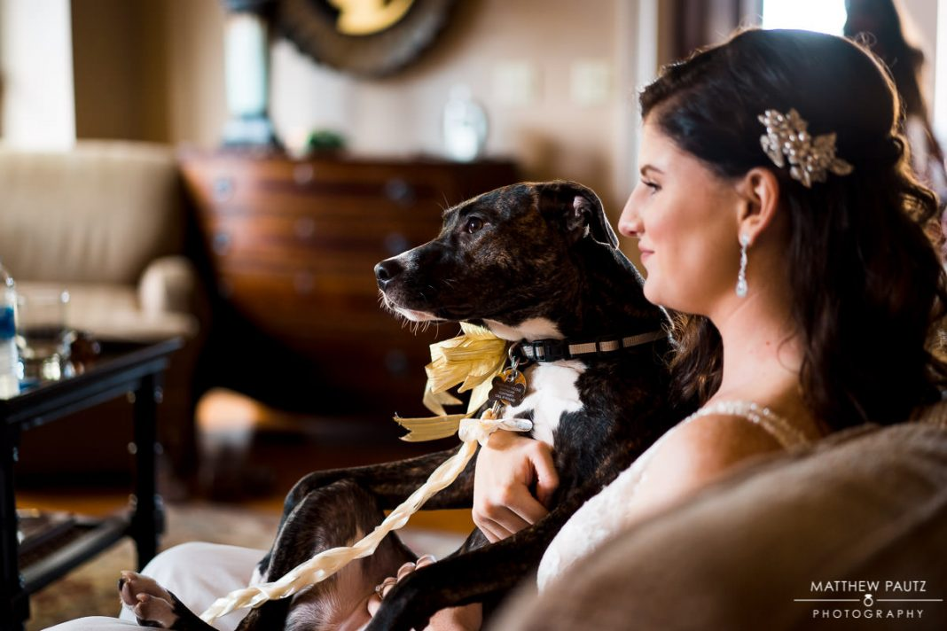 Bride hugging dog before wedding ceremony