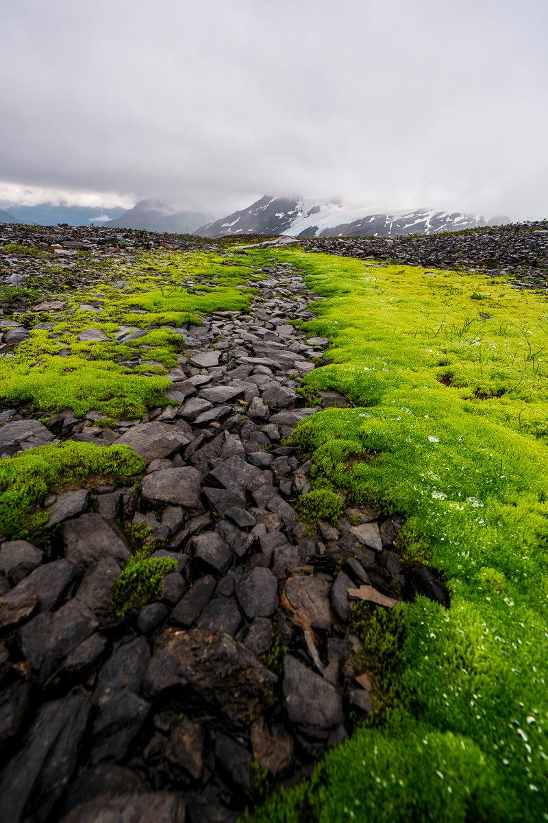 Harding IceField Landscape Photo