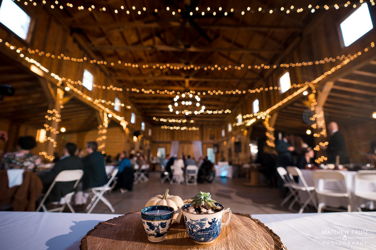 Charlyn Farms Wedding Reception