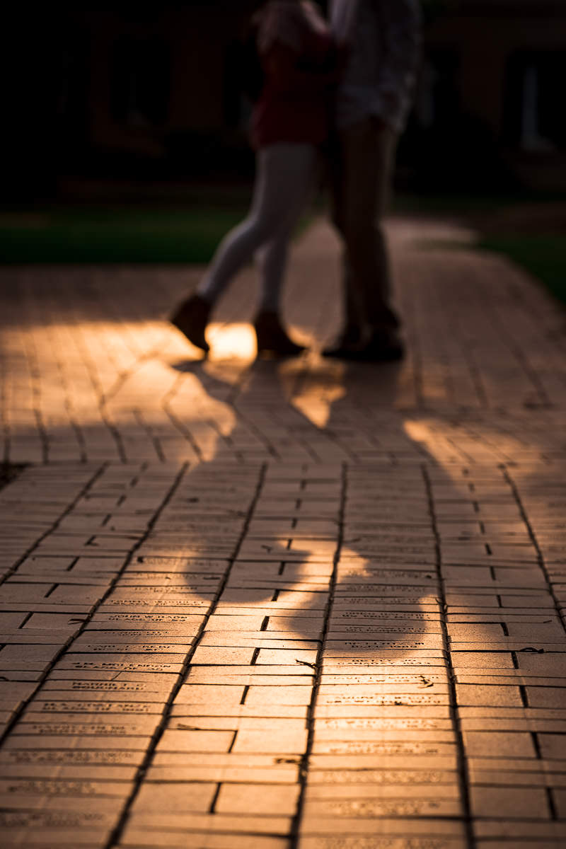 University of South Carolina Engagement Photos