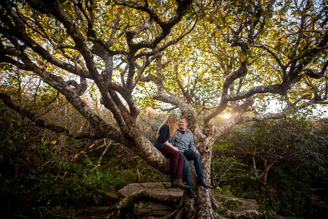 engagement photography at Craggy Gardens